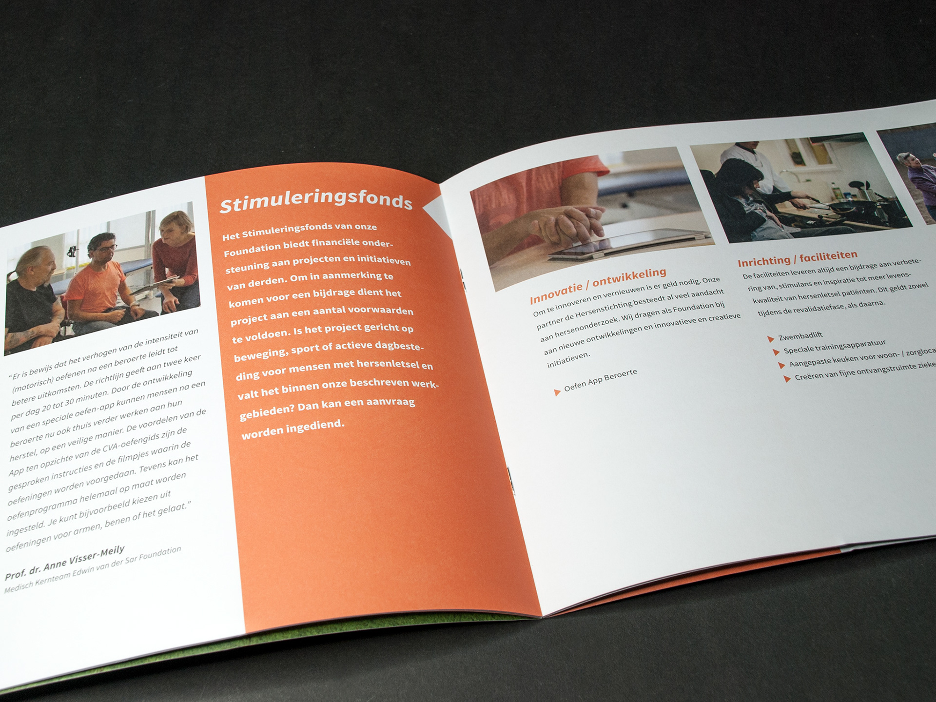 Edwin van der Sar Foundation, brochure